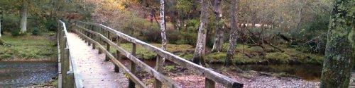 Puttles Bridge