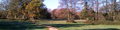 Culverley Green